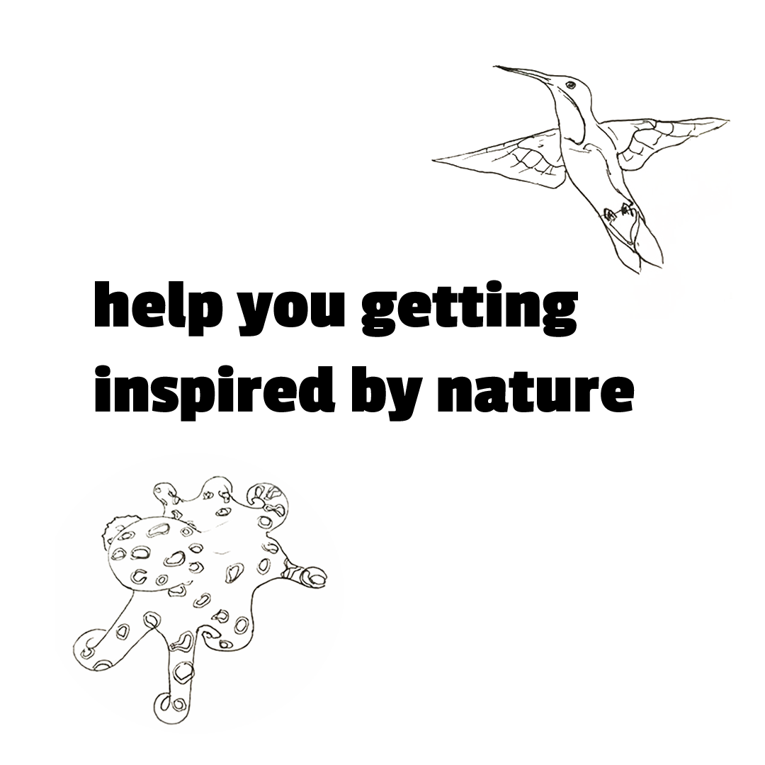 help you getting inspired by nature