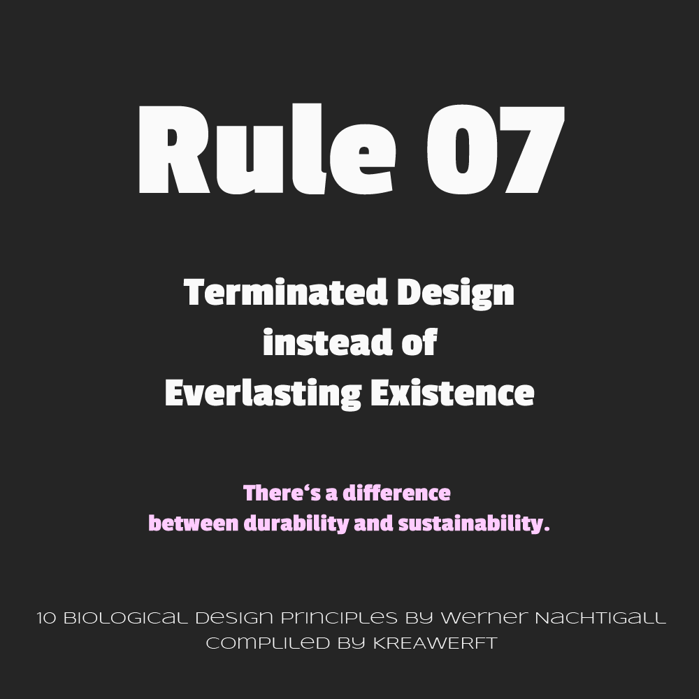 Biological Design Rules by Werner Nachtigall - #07