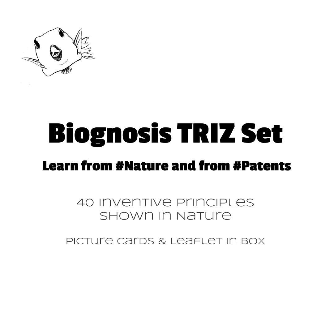 Contents of the Biognosis TRIZ Set - 40 picture cards and leaflet in box