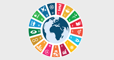 SDG Icons (circular depiction)