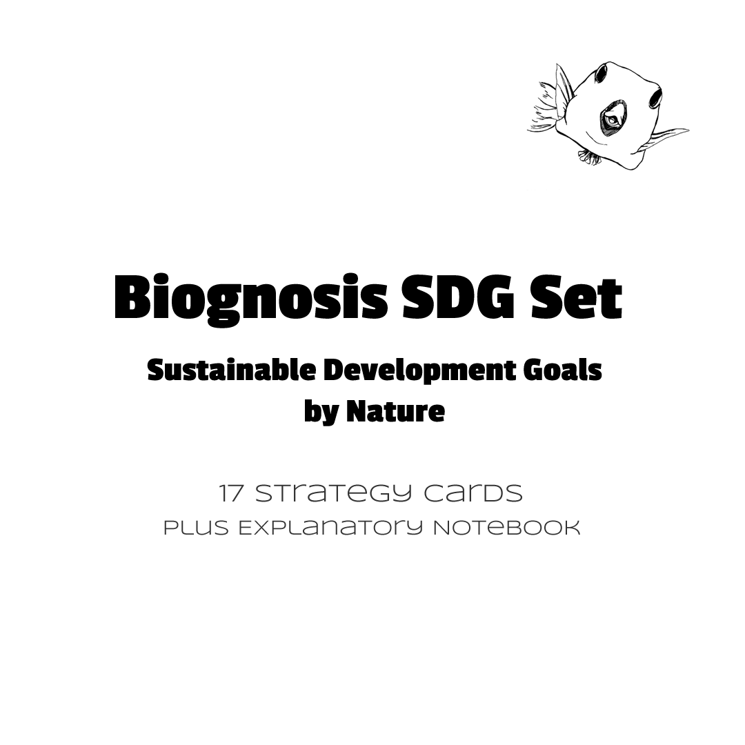 Contents of the Biognosis SDG Set - 17 strategy cards and notebook