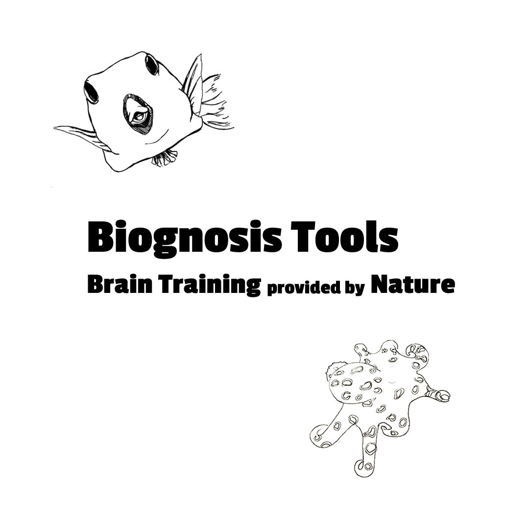 Biognosis Tools - Brain Training provided by Nature