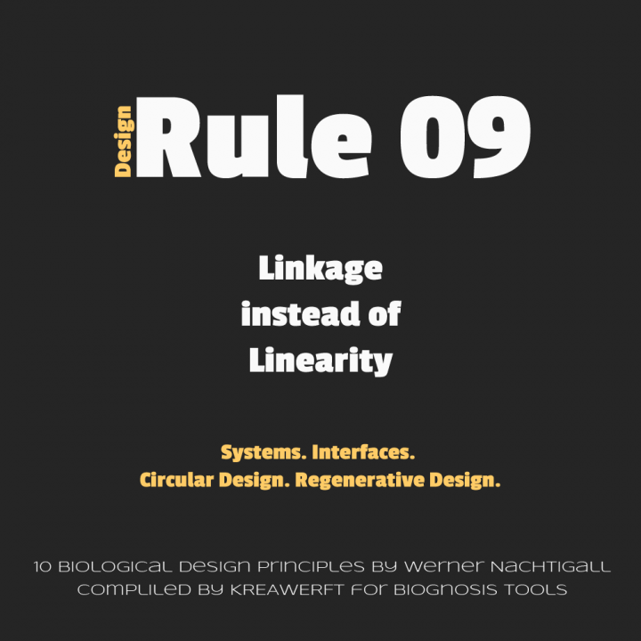 Biological Design Rule 09 by Werner Nachtigall - Linkage instead of Linearity