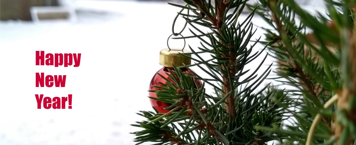 Picture showing a conifer with a small red glitter ball and a snowy landscape in the background