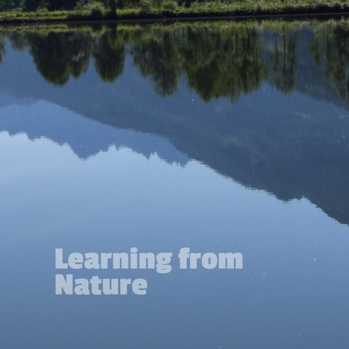 "Picture of mountains and woods, reflected in a quiet lake - with text ""learning from nature"""